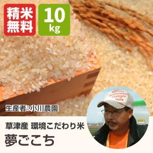 環境こだわり米夢ごこち(小川農園) 10kg 令和2年 滋賀県産 近江米 - 道の駅草津|oumitokuichi