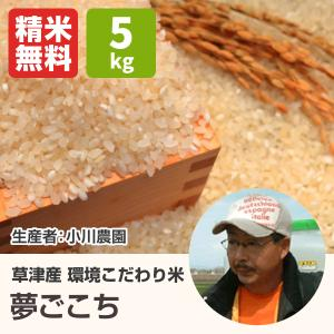 環境こだわり米夢ごこち(小川農園) 5kg 令和2年 滋賀県産 近江米 - 道の駅草津|oumitokuichi