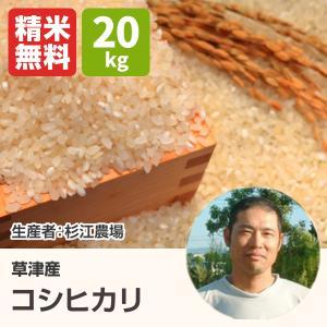 コシヒカリ(杉江農場) 20kg 令和2年 滋賀県産 近江米 - 道の駅草津|oumitokuichi