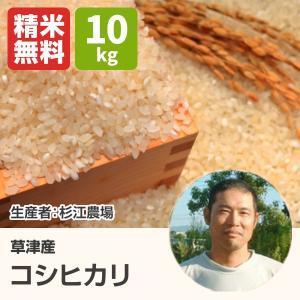 コシヒカリ(杉江農場) 10kg 令和2年 滋賀県産 近江米 - 道の駅草津|oumitokuichi