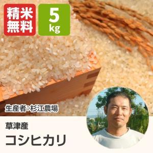 コシヒカリ(杉江農場) 5kg 令和2年 滋賀県産 近江米 - 道の駅草津|oumitokuichi
