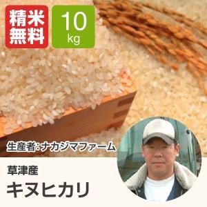 キヌヒカリ(ナカジマファーム) 10kg 令和元年 滋賀県産 近江米 - 道の駅草津|oumitokuichi