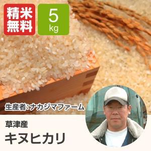 キヌヒカリ(ナカジマファーム) 5kg 令和元年 滋賀県産 近江米 - 道の駅草津|oumitokuichi