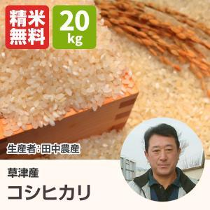 コシヒカリ(田中農産) 20kg 令和2年 滋賀県産 近江米 送料無料- 道の駅草津|oumitokuichi