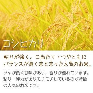 無洗米コシヒカリ(ナカジマファーム) 5kg 平成30年 滋賀県産 近江米 - 道の駅草津|oumitokuichi|02