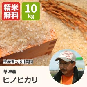 環境こだわり米ヒノヒカリ(小川農園) 10kg 令和元年 滋賀県産 近江米 - 道の駅草津|oumitokuichi