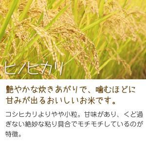 環境こだわり米ヒノヒカリ(小川農園) 10kg 令和元年 滋賀県産 近江米 - 道の駅草津|oumitokuichi|02