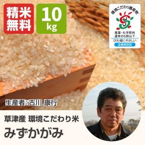 環境こだわり米 みずかがみ(古川康行) 10kg 令和2年 滋賀県産 近江米 - 道の駅草津|oumitokuichi