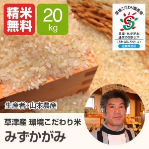 単一原料米 100%みずかがみ 環境こだわり米 みずかがみ(山本農産) 20kg 令和2年 滋賀県産 近江米 - 道の駅草津|oumitokuichi