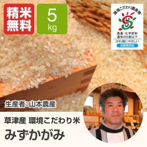 単一原料米 100%みずかがみ 環境こだわり米 みずかがみ(山本農産) 5kg 令和2年 滋賀県産 近江米 - 道の駅草津|oumitokuichi