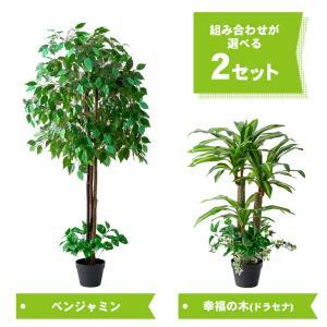 人工観葉植物 フェイクグリーン 光触媒 ベンジャミン 幸福の木(ドラセナ) 2本セット 送料無料|outlet-f|05