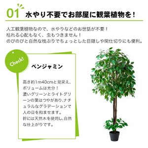 人工観葉植物 フェイクグリーン 光触媒 ベンジャミン 幸福の木(ドラセナ) 2本セット 送料無料|outlet-f|06