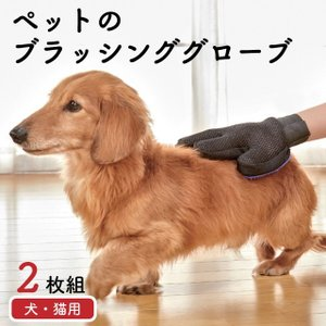 ペット ブラシ 手袋 グローブ グルーミング ペットのブラッシンググローブ2枚組  送料無料|outlet-f