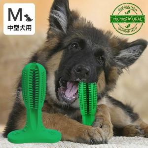 犬 デンタル おもちゃ 犬用歯ブラシ 犬 歯磨き 歯みがき デンタルケア 歯ブラシおもちゃ Mサイズ 中型犬用 代金引換不可|outlet-f