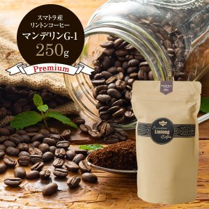 【在庫一掃セール】コーヒー豆 インドネシア マンデリン G-1 ガニシラバン スマトラ リントンコー...