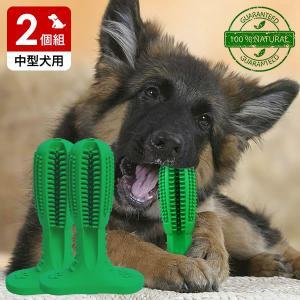 犬用歯ブラシ 2個組 犬 歯磨き 歯みがき デンタルケア おもちゃ 送料無料|outlet-f