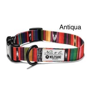 WOLFGANG Collar Sサイズ Antigua(ウルフギャング カラー)お洒落なカラー Sサイズ|outtail