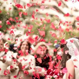 小物 フラワーシャワー 300枚セット レッド ピンク ホワイト 赤 桃|overlap