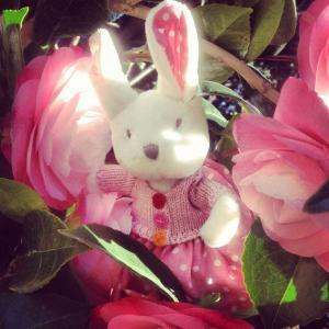 うさぎ ぬいぐるみ うさぎのポピー Ragtags Poppy rabbit Ragtales ovlov