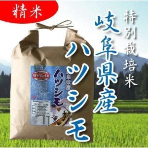 29年産 特別栽培米 岐阜県産 美濃ハツシモ 精米 5kg...