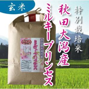 特別栽培米 秋田大潟村産ミルキープリンセス 低アミロース米 玄米 1kgの商品画像|ナビ
