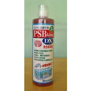 PSBキングDX 500ml|p-and-f