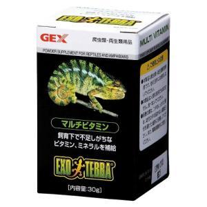 GEXマルチビタミン30g【レターパックプラスOK】|p-animal