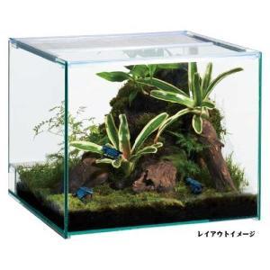 【キャシュレス5%還元対象】GEXレプテリアクリア300キューブ(フトアゴ リクガメ 水槽 セット 保温 カメ ライト)