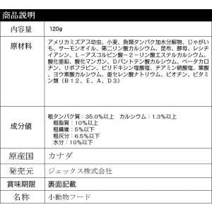 GEXレオパブレンドフード120g【レターパックプラスOK】|p-animal|02