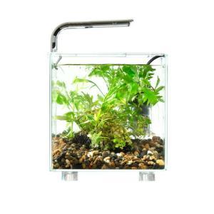 マルカンニッソーテーブルアクアグラスキューブセット(水槽 コケリウム 小型水槽 おしゃれな水槽)