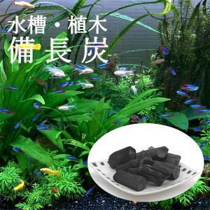 水槽・植木用 備長炭 植物 魚 土壌改良 水質 浄化作用 花瓶 盆栽 植木鉢 家庭菜園 土 金魚鉢 軍手付き|p-comfort