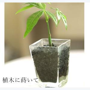 運気アップ 備長炭 粒 びんちょうたん 花瓶 グラス 水槽 植木鉢  空気 キレイ 水質 浄化 お部屋 置き炭 インテリアに|p-comfort