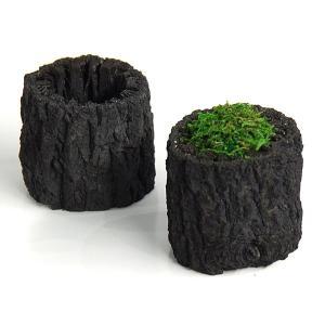 くぬぎ炭 2個セット 穴あき 植木鉢 鉢 プランター ミニ 観葉植物用 苔 ポット 入れ物 ガーデニング ニオイとり 玄関に リビングに 和室に 贈り物 日本製|p-comfort
