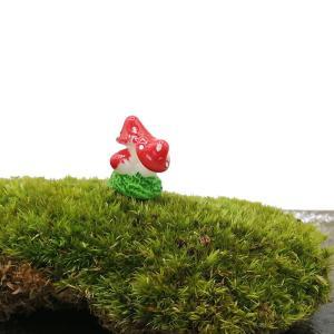 DIY ミニチュア きのこ ドールハウス インテリア 樹脂 盆栽 箱庭 苔リウム テラリウム ガーデン 風景 装飾 小道具 DIY|p-comfort