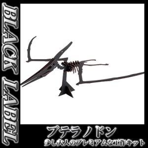 hacomo / BLACK LABEL プテラノドン(ブラック)  [恐竜 ダンボール工作  知育玩具 模型 夏休み 自由研究]【B-2520_012702】|p-kaneko