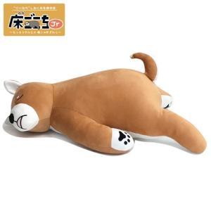 床ごこち抱き枕Jr 柴犬のタロくん / ぬいぐるみ 寝具 クッション 動物 アニマル ギフト プレゼン (B-9717_049029)u89|p-kaneko