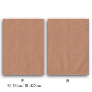 クラフト平袋 M 未晒 紙袋 60枚 p-maruoka