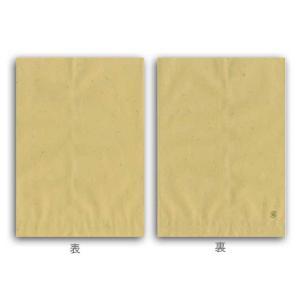 柄小袋 ナチュラル 18才 紙袋 500枚 p-maruoka