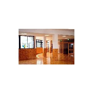 モーエンアクア サンジング 15kg 木部用水性クリヤー塗料|p-nsdpaint|02