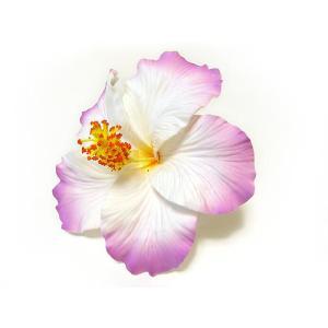 ハイビスカスビッグサイズ 薄紫/白|p-para
