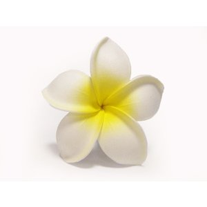 プルメリアピック(タイプ4) 白/黄色|p-para
