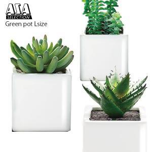 観葉植物 造花 人工植物 ASA グリーン ポット Lサイズ p-s