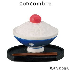 concombre コンコンブル 炊きたてごはん  p-s