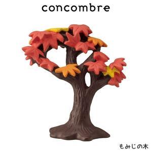 concombre コンコンブル もみじの木  p-s