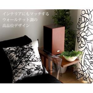 アナバス オーディオ CDクロックラジオシステム AA-001|p-s|02