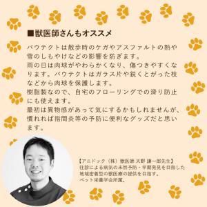オールシーズンブーツ PAWTECT パウテクト / 犬 犬用 ブーツ / 送料無料|p-star|09