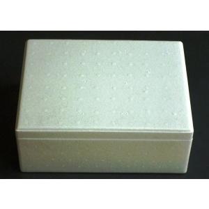 保冷箱 クーラーボックス M|package-paradise