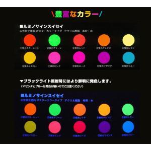 ルミノサインスイセイ   600ml(水性蛍光塗料/シンロイヒ)【人気】|paintjoy|02
