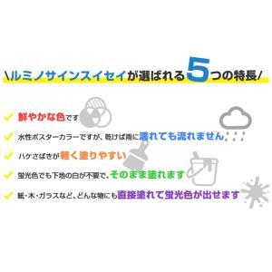 ルミノサインスイセイ   600ml(水性蛍光塗料/シンロイヒ)【人気】|paintjoy|04