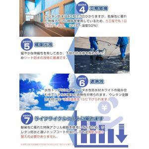 アトレーヌ水性防水材  16kg (水性一液型防水塗料)|paintjoy|03